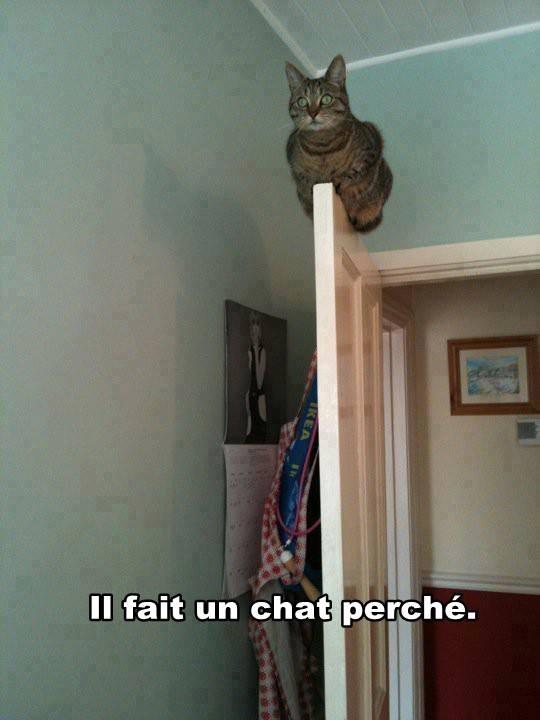 13-09-22-ChatParche