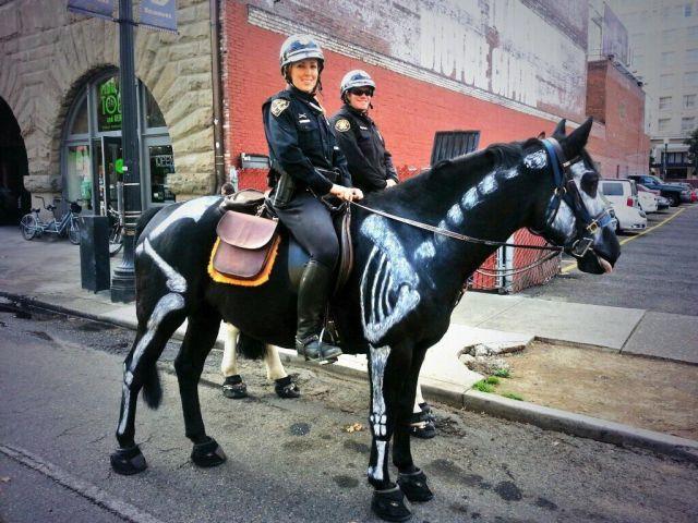 13-11-05-Police