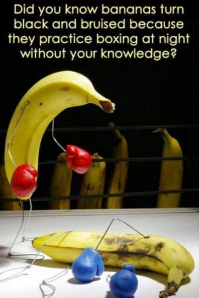 13-11-22-Banane