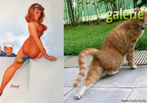 Chat vs Pinup