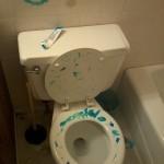 Décoration des wc