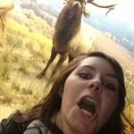 Selfie Wapiti