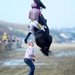Joli saut à cheval